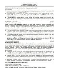Account Representative Sample Resume 1 Sales Executive Example