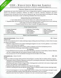 Turn Around And Exit Resume Samples Beautiful Ceo Resume Sample