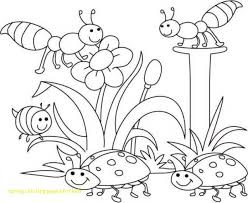 Spring Coloring Pages For Kids With 1000 About Spring Pinterest