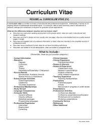 Cv Resume Template Magnificent Resume Template Sample Cv Resume Free Career Resume Template