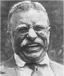 theodore roosevelt policy domestic foreign second theodore roosevelt