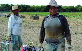poverty in the us oxfam america poverty exists even in wealthy nations like the us farmworkers in washington toil in hot dry fields to harvest onions photo mary babic oxfam america