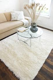 5 by 8 rugs ipy