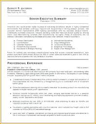Executive Resume Cool Senior Executive Resume Sample Samples Free Mmventuresco