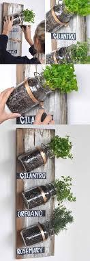 Accessories: DIY Twining Herb Garden In Sunny Windowsill - Herb Garden Ideas
