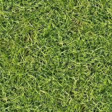 dirt grass texture seamless. Grass Long Texture Dirt Seamless