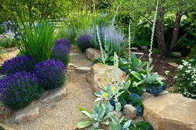 california native plant list drought proof landscape design