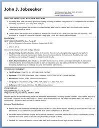IT Employee Resume Format