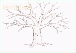 Drawing A Family Tree Template Genealogy Tree Template Admirably Figure Free Family Tree