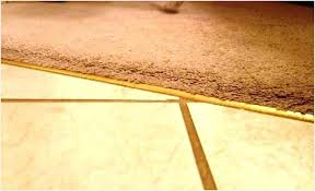 tile to carpet transition strip how to transition molding hardwood to tile transition hardwood to tile