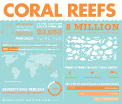 coral reef essay coral reefs mrs franks esl corals and coral reefs  short notes on the importance of coral reefs in the marine ecosystem importance of coral reefs