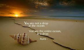 Rumi Quotes On Life Fascinating Download Rumi Quotes On Life Ryancowan Quotes