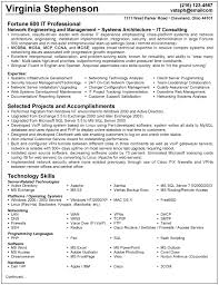 Resume Examples For It Professionals Resume Of It Professional Magdalene Project Org