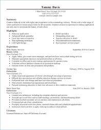Esthetician Resume Sample Artemushka Com