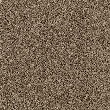 Valders Color Pebble Path 12 ft Carpet 0472D 21 12 The Home Depot