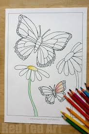 Free Butterfly Colouring Pages For Spring Summer Red Ted Art