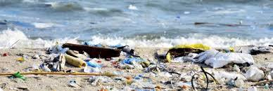 Resultado de imagen de plastique océans