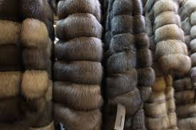 what should you look for when you seek out a fur appraisal