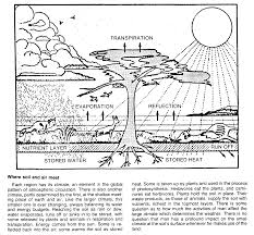 desertification essay desertification essay the rio church  desertification essay