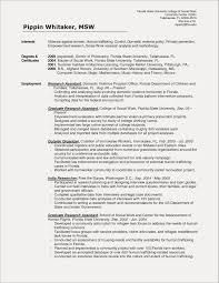 Social Work Resume Examples Social Worker Social Work Resume Social