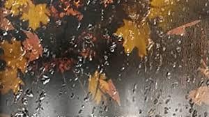 Картинки по запросу осень дождь