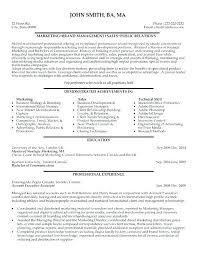 Ceo Cv Template Doc Sample Resume Getpicks Co