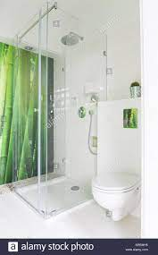 White bathroom with green bamboo ...