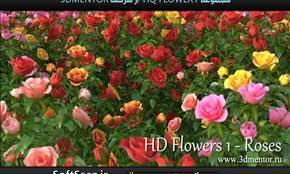 the 3dmentor hd flowers vol 1