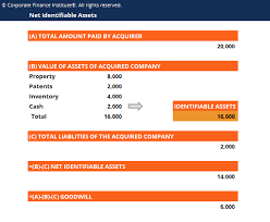 Net Identifiable Assets Purchase Price Allocation Goodwill In M A