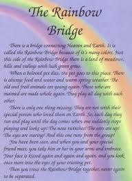 Rainbow Bridge Poem on Pinterest | Rainbow Bridge Dog, Loss Of Pet ... via Relatably.com