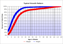 Growth Chart Questions Page 2 Poodle Forum Standard