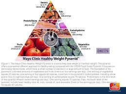 28 ts figure 1 the mayo clinic healthy weight pyramid is a tool