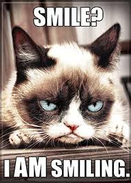 grumpy cat i am smiling. Simple Cat AtaBoy Grumpy Cat U0027Smile I AM Smilingu0027 25u0026quot X 35u0026quot Throughout Am Smiling R