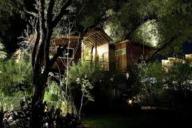 tree house jaipur. Hotel Exterior Tree House Jaipur S
