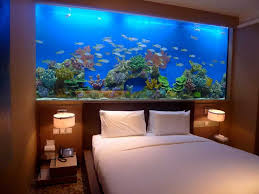 Captivating Fish Tank Room Divider For Contemporary Home Ideas: Captivating Fish  Tank Room Divider With
