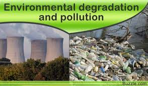 essay on environmental degradation and pollution power point  essays on environmental degradation and economic development