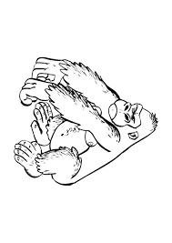 Kleurplaat Gorilla Afb 9682 Images