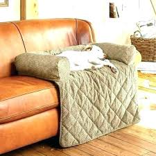 dog sofa protector couch protector for dogs dog couch protector pet couch cover sofa cover for