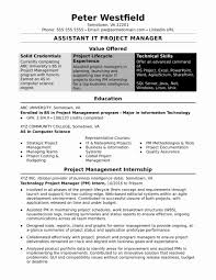 Project Manager Resume Template New Project Manager Resume Sample