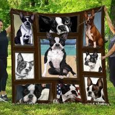 Boston Terrier Size Chart Habeeqt5136 Boston Terrier