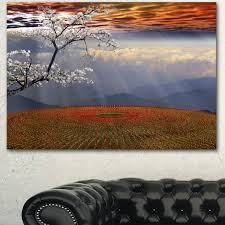 Flower field sunset Animated Designart beautiful Flower Field At Sunset Extra Large Landscape Canvas Art Red Overstock Shop Designart beautiful Flower Field At Sunset Extra Large