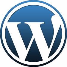 Hasil gambar untuk logo web