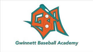 Image result for gwinnett baseball academy