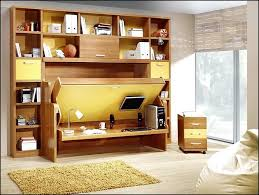 Moddi Murphy Bed Plans Home Design Remodeling Ideas