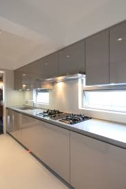 Topic For Kitchen Cabinets Design Hong Kong European Kitchen