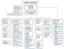 Current State Department Org Chart Organizational Structure Ministry Of Health
