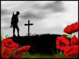 Image result for earl haig poppies
