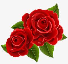 beautiful clipart red rose beautiful