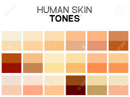 Skin Complexion Color Chart Skin Tone Color Chart Human Skin Texture Color Infographic Palette