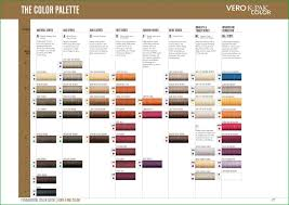Rusk Toner Chart Expository Rusk Hair Color Swatch Hair Color Swatch Book 126